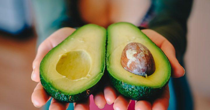 Aguacate y mango mexicano: Primer y segundo lugar en la exportación mundial