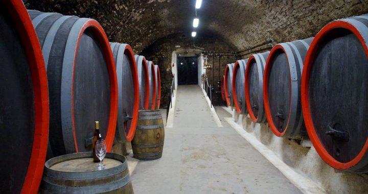 """La Rioja: elaboracion vino con """"La Vieja Bodega"""" """"Gomez Cruzado"""""""