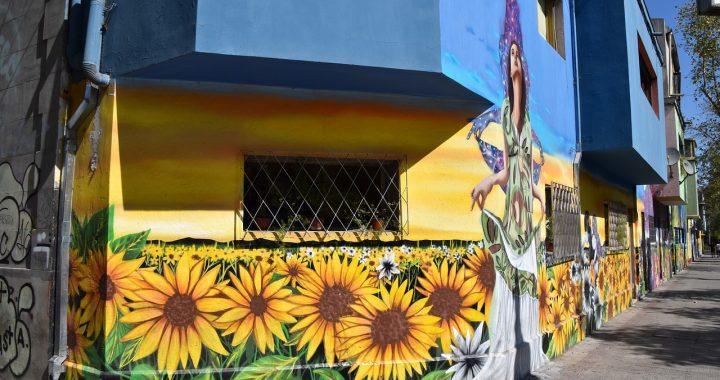 CHILE: entre una nueva constitución y una oportunidad trascendente